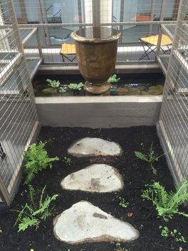 cat-fountain[1]